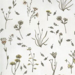 Botanicals By Janet Clare For Moda - Parchment