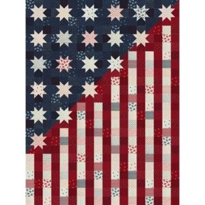 American Gatherings - Our Flag Stands For Freedom Kit By Crystal Manning For Moda