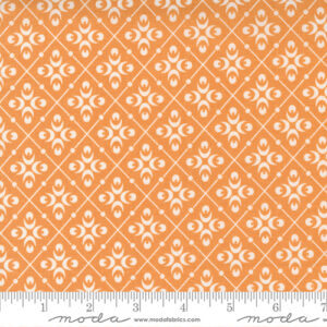 Pumpkins And Blossoms By Fig Tree & Co. For Moda - Pumpkin