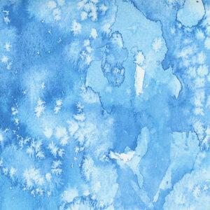Starflower Christmas By Create Joy Project For Moda - Light Blue
