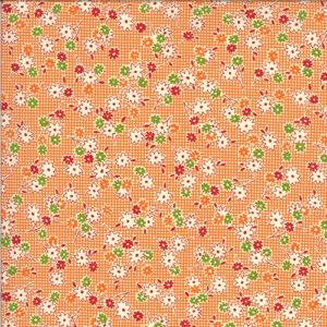 It\'s Elementary By American Jane For Moda - Orange