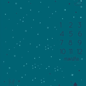 """Birthday 36"""" X 45"""" Panel By Sarah Watts Of Ruby Star Society For Moda - Teal"""