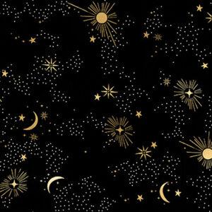 "Cosmos 108"" Quiltback By Ruby Star Society For Moda - Black"