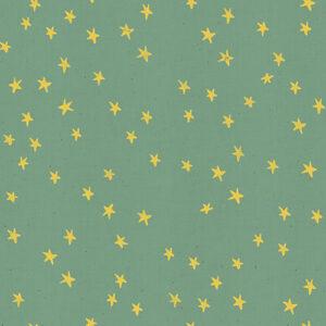 Starry By Alexia Abegg Of Ruby Star Society For Moda - Soft Aqua
