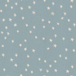 Starry By Alexia Abegg Of Ruby Star Society For Moda - Soft Blue