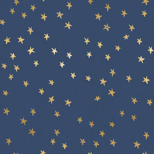 Starry By Alexia Abegg Of Ruby Star Society For Moda - Bluebell
