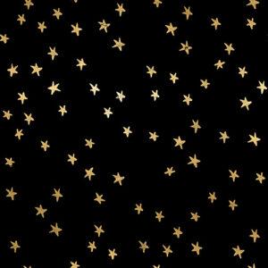 Starry By Alexia Abegg Of Ruby Star Society For Moda - Black-Gold