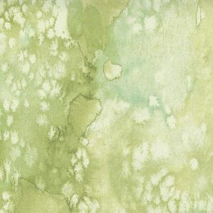 Fresh As A Daisy Digital By Create Joy Project For Moda - Fresh Grass