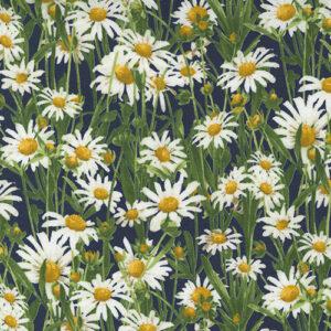 Wildflowers Mini Charm Packs By Moda - Packs Of 24