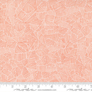 Meander By Aneela Hoey For Moda - Blush