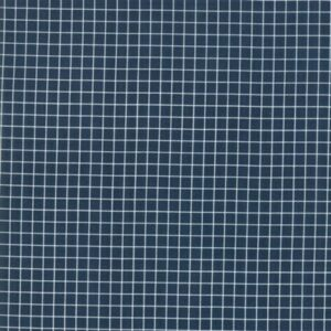 Grid By Kimberly Kight Of Ruby Star Society For Moda - Peacock